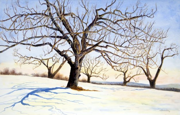 Bare tree on snowy landscape
